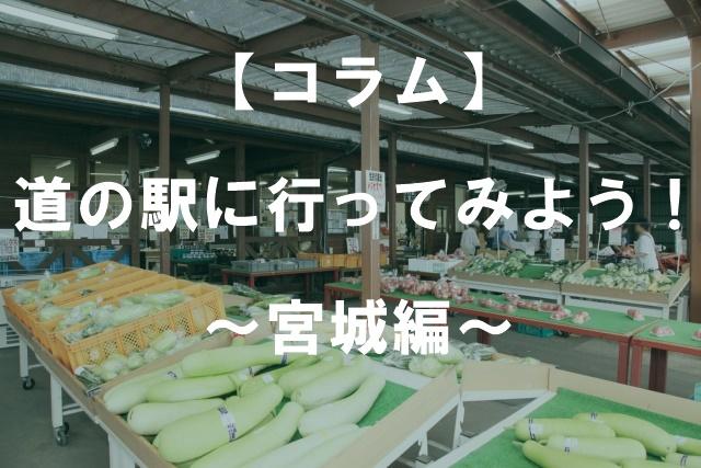 【コラム】道の駅に行ってみよう!~宮城編~