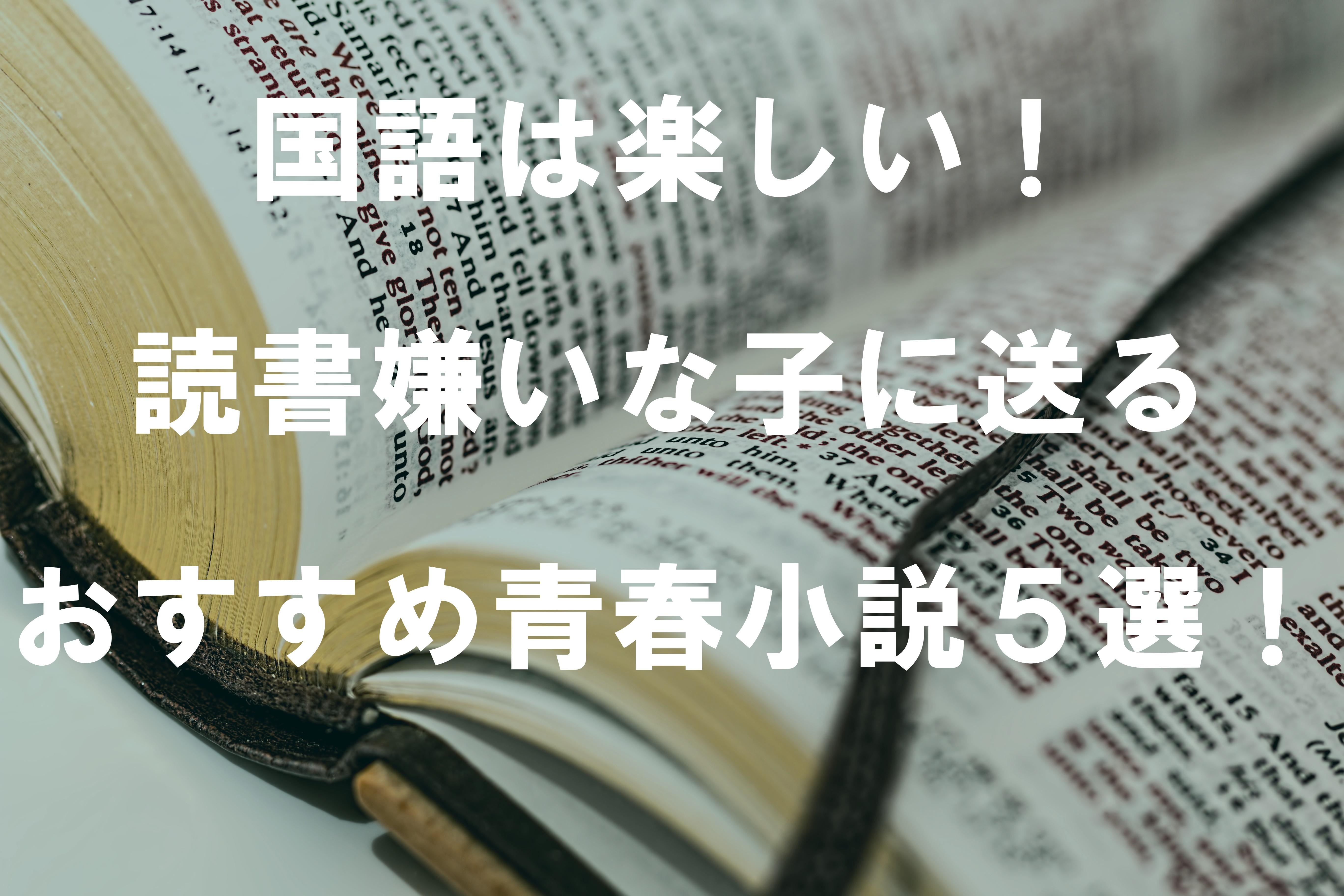 国語は楽しい!読書嫌いな子に送るおすすめ青春小説5選!